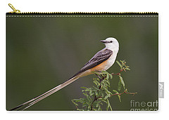 Male Scissor-tail Flycatcher Tyrannus Forficatus Wild Texas Carry-all Pouch by Dave Welling