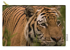 Male Tiger Carry-all Pouch