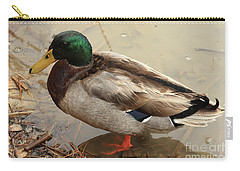 Carry-all Pouch featuring the photograph Mallard Duck by Kim Henderson