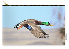 Mallard Flying Over Carry-all Pouch