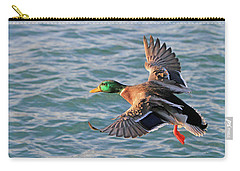 Mallard In Flight 3 Carry-all Pouch