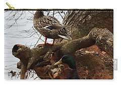 Carry-all Pouch featuring the photograph Mallard by Kim Henderson