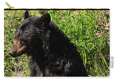 Mama Black Bear Carry-all Pouch
