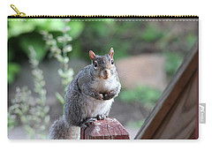 Mama Squirrel Carry-all Pouch