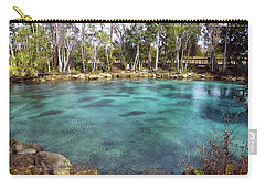Manatees Sleeping In Morning Glory Spring Carry-all Pouch