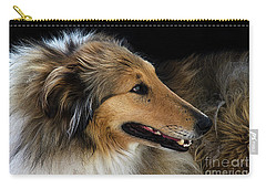 Carry-all Pouch featuring the photograph Man's Best Friend by Bob Christopher