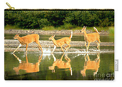 Carry-all Pouch featuring the photograph Many Glacier Deer 2 by Adam Jewell