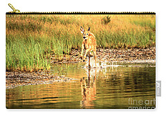 Carry-all Pouch featuring the photograph Junior Dashing Through The Water by Adam Jewell