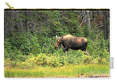Carry-all Pouch featuring the photograph Many Glacier Moose 5 by Adam Jewell
