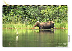 Carry-all Pouch featuring the photograph Many Glacier Moose 6 by Adam Jewell