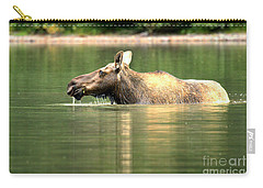 Carry-all Pouch featuring the photograph Many Glacier Moose 7 by Adam Jewell