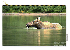 Carry-all Pouch featuring the photograph Many Glacier Moose 8 by Adam Jewell