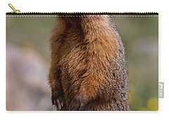Carry-all Pouch featuring the photograph Marmot by Gary Lengyel