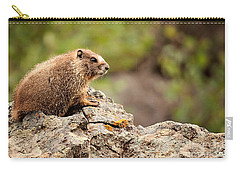 Marmot Carry-all Pouch by Lana Trussell