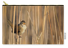 Marsh Wren Square Carry-all Pouch