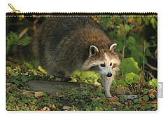 Carry-all Pouch featuring the photograph Maskless Raccoon by Doris Potter