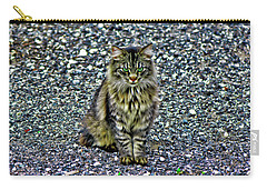 Mattie The Main Coon Cat Carry-all Pouch