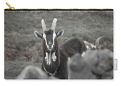 May I Help You Carry-all Pouch by Betsy Knapp