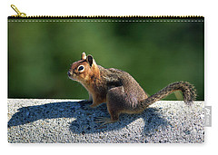 Carry-all Pouch featuring the photograph Me And My Shadow by Sharon Talson