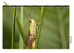 Carry-all Pouch featuring the photograph Meadow Grasshopper by Jouko Lehto