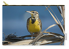Meadowlark Beauty Carry-all Pouch