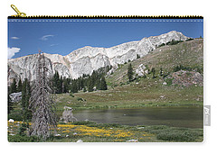 Medicine Bow Peak Carry-all Pouch