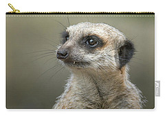 Meerkat Model Carry-all Pouch by Racheal  Christian