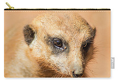 Carry-all Pouch featuring the photograph Meerkat by Shannon Harrington