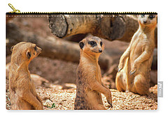 Carry-all Pouch featuring the photograph Meerkats by Shannon Harrington
