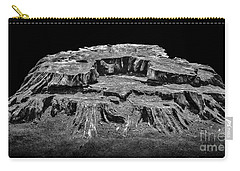 Mesa Butte Stump Carry-all Pouch