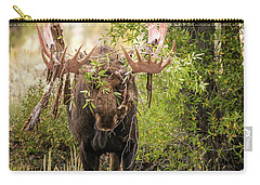Carry-all Pouch featuring the photograph Messy Moose by Mary Hone