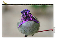 Metalic Hummingbird Carry-all Pouch by Shoal Hollingsworth