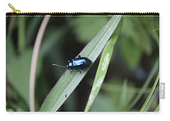 Metallic Insect Carry-all Pouch by Sumit Mehndiratta