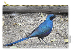 Carry-all Pouch featuring the photograph Meve's Starling by Betty-Anne McDonald