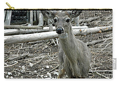 Carry-all Pouch featuring the photograph Michigan White Tail Deer by LeeAnn McLaneGoetz McLaneGoetzStudioLLCcom