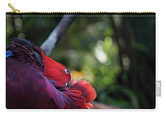 Miksang 4 Parrot Carry-all Pouch by Theresa Tahara