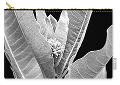 Carry-all Pouch featuring the photograph Milkweed Black And White by Christina Rollo
