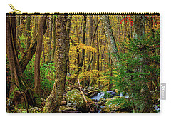 Mill Creek In Fall #1 Carry-all Pouch