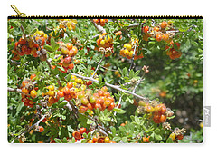 Miniature Fruit Balls Carry-all Pouch
