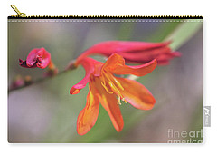 Carry-all Pouch featuring the photograph Misplaced Beauty by Linda Lees