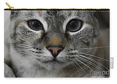 Miss Faryn Carry-all Pouch by Skip Willits