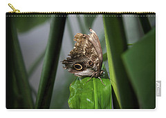 Carry-all Pouch featuring the photograph Misty Morning Owl by Karen Wiles
