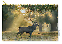 Carry-all Pouch featuring the photograph Misty Walk by Scott Carruthers