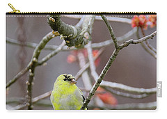 Carry-all Pouch featuring the photograph Molting Gold Finch by Bill Wakeley