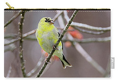 Carry-all Pouch featuring the photograph Molting Gold Finch Square by Bill Wakeley