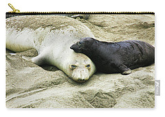 Carry-all Pouch featuring the photograph Mom And Pup by Anthony Jones