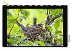 Moma Robin Incubating Carry-all Pouch