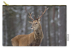 Monarch Of The Woods Carry-all Pouch
