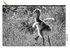 Monochrome Baby Sandhill Crane   Carry-all Pouch