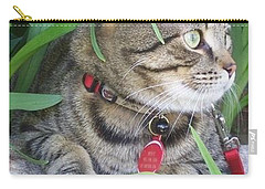 Carry-all Pouch featuring the photograph Monty In The Garden by Jolanta Anna Karolska